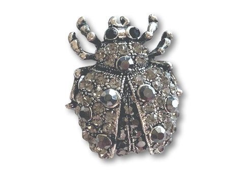 Antique Silver Small Beetle Brooch