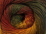 NEW Bonita Yarns - Merino Dream - Earth Shades