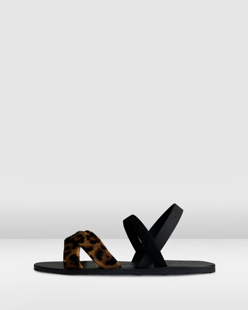 THE SLINGBACK. VOYAGE