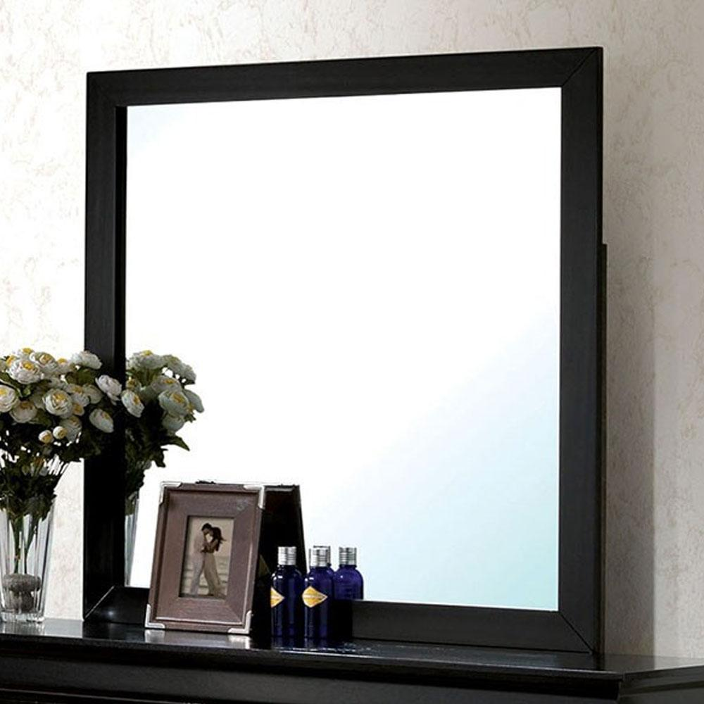 Louis Philippe - Transitional - Black - Mirror}