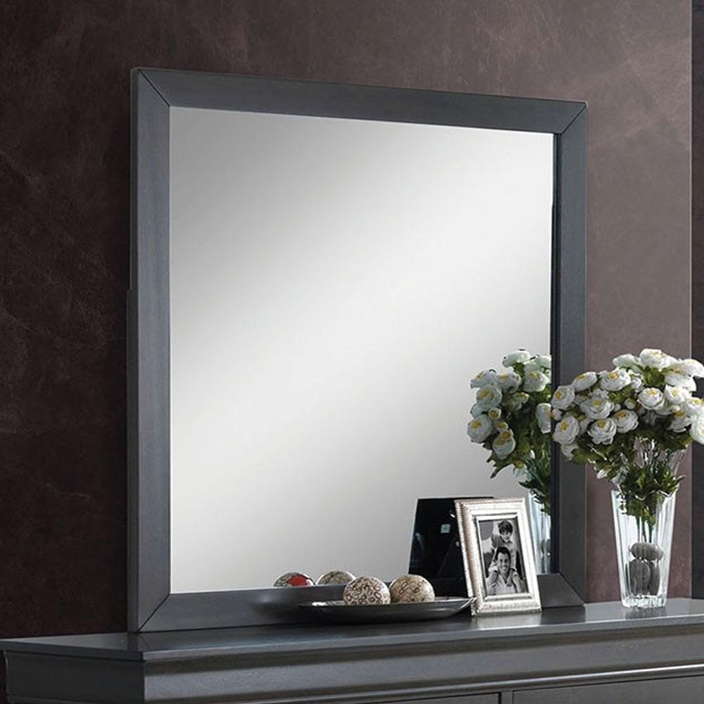 Louis Philippe - Transitional - Gray - Mirror