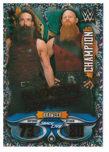 WWESA11-016 Bludgeon Brothers