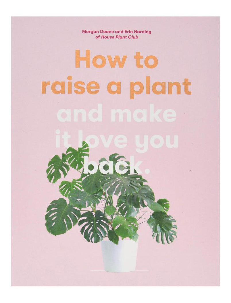 HOW TO RAISE A PLANT BY MORGAN DOANE - Tempted Kensington