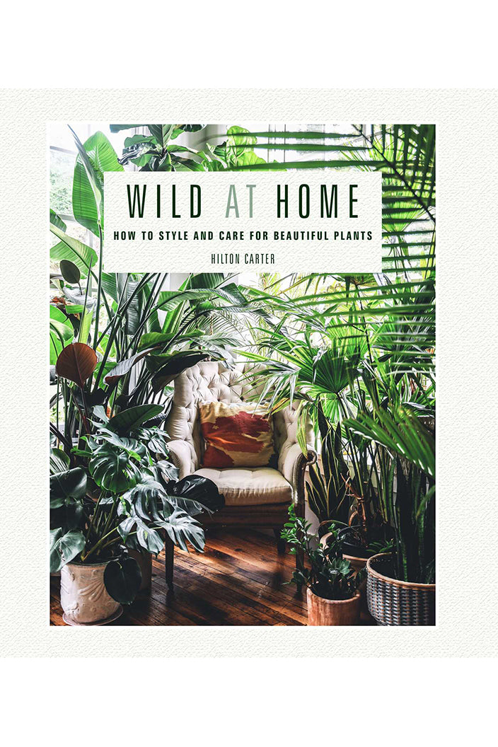 WILD AT HOME BY HILTON CARTER - Tempted Kensington