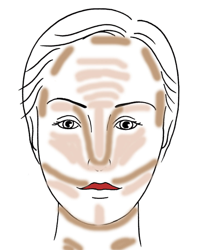 Makeup face Contour Highlight