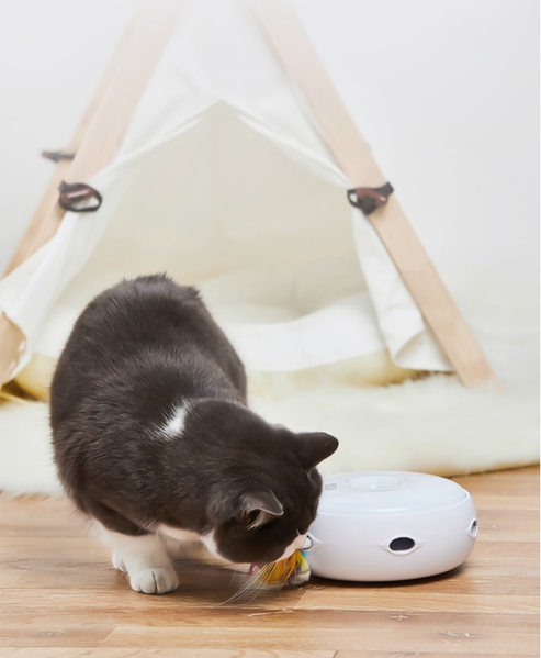 Interactive Cat Toy With Feather