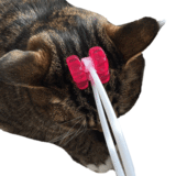 PetCaveCo™ Cat Face Massager