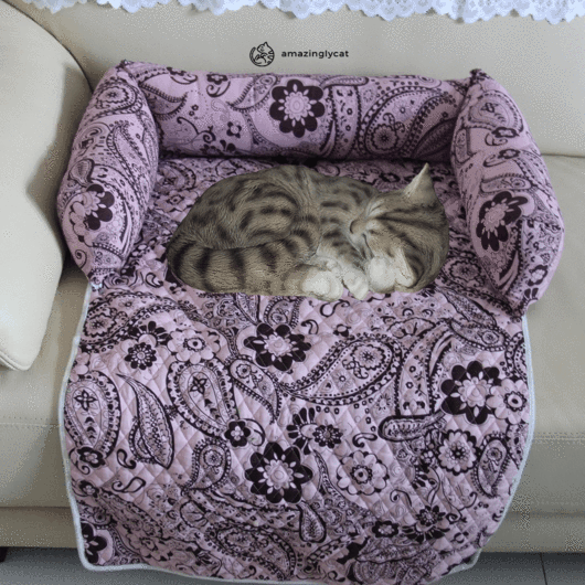 Furniture Saver Comfy Cat Bed