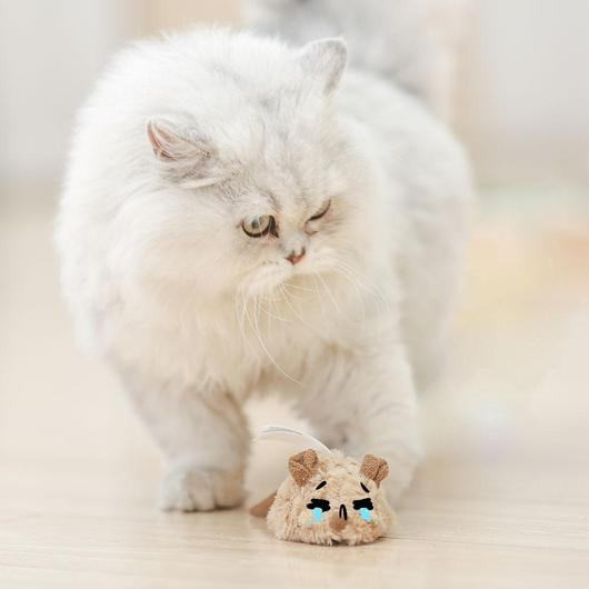 Interactive Motion Activated Mouse Toy