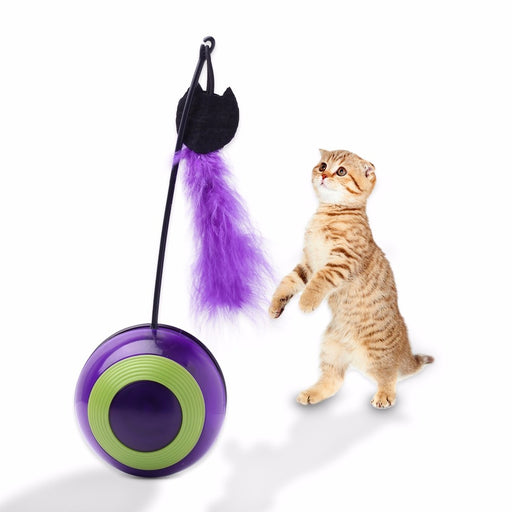 PetCaveCo® Interactive Feathered Tumbler Cat Toy With Sound