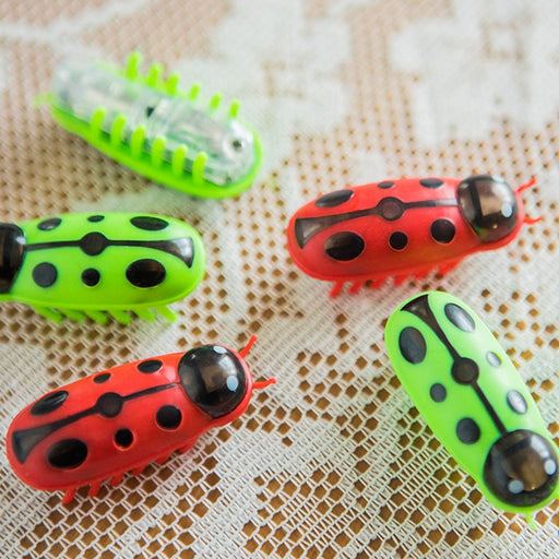 Crazy Lady Bug Cat Toy