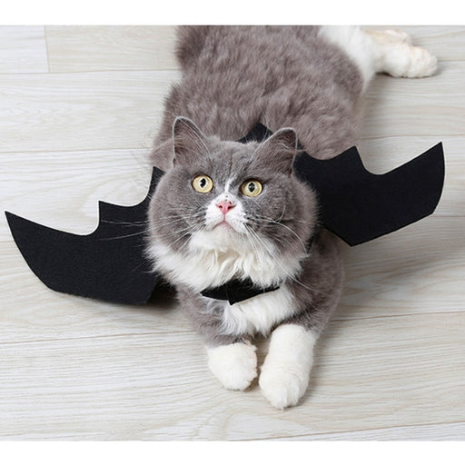 Easy Batwings Cat Halloween Costume | Pet Apparel