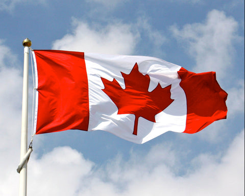 Canadian Flag to Symbolize the Canadian Government Donating Money to Eco Friendly Organizations to Fight Plastic Pollution