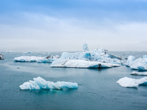 Icebergs global warming