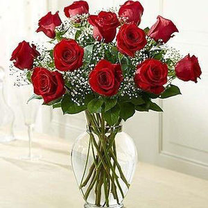 One Dozen Premium Roses In Vase With Baby's Breath (Multiple Colors Available)