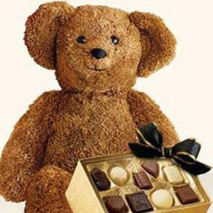 ADORABLE PLUSH BEAR WITH CHOCOLATES