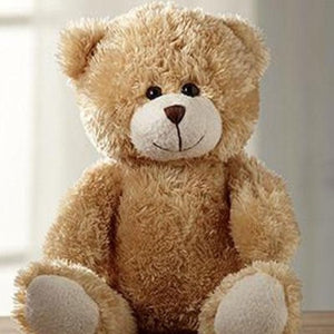 ADORABLE PLUSH BEAR
