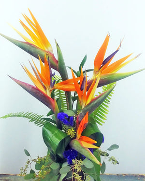 TROPICAL CELEBRATIONS BOUQUET
