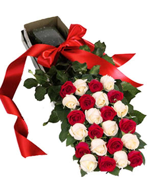 TWO DOZEN ROSES IN THE BOX (Variety of colors available)
