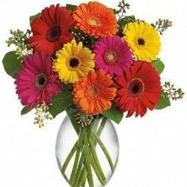 Cheerful Thoughts Bouquet (One dozen Gerberas)