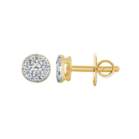 Classic Studs and Tops in Yellow Gold