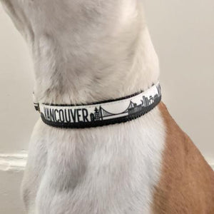 Bone and Bred VANCOUVER Black Martingale Collar