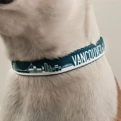 Bone and Bred VANCOUVER Teal Martingale Collar
