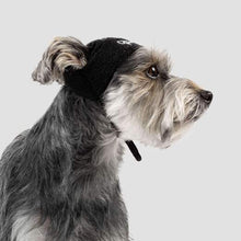 Load image into Gallery viewer, CANADA POOCH Basic Beanie