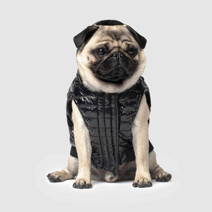CANADA POOCH Shiny Puffer Vest