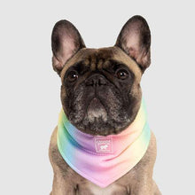 Load image into Gallery viewer, CANADA POOCH Cooling Bandana RAINBOW