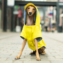 Load image into Gallery viewer, CANADA POOCH Torrential Tracker