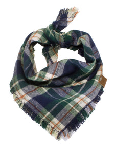 The Triangle Scarf - Blue & Green Plaid