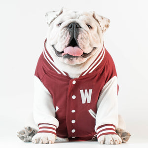 Wonton Collection Varsity Jacket (Burgundy) CUSTOMIZABLE CHEST LETTER