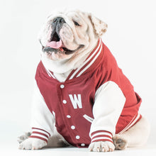 Load image into Gallery viewer, Wonton Collection Varsity Jacket (Burgundy) CUSTOMIZABLE CHEST LETTER
