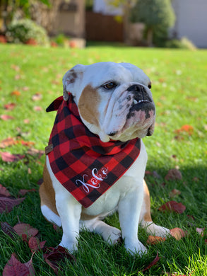 Buffalo Red & Black Plaid Personalized Scarf