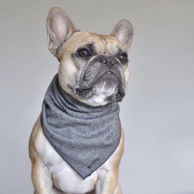 Load image into Gallery viewer, BARKHOLIC Banjo Bandana