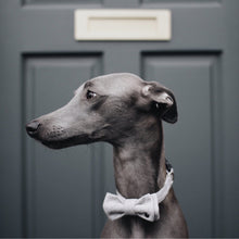 Load image into Gallery viewer, BARKHOLIC Milo Bow Tie