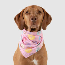 Load image into Gallery viewer, CANADA POOCH Follow Me Bandana DONUT