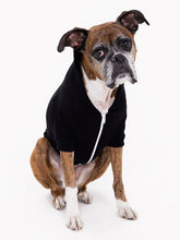 Load image into Gallery viewer, A.A. Doggy Hoodie (3 variants available)