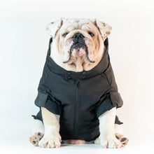 Load image into Gallery viewer, WONTON COLLECTION Thunder Rain Jacket (shipping included)