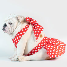 Load image into Gallery viewer, Wonton Collection Red & White Polka Dot Dress