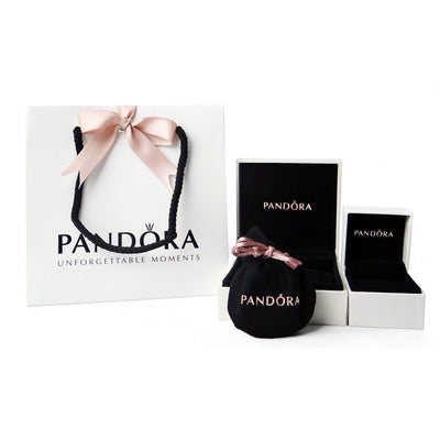 Pandora Moments hopearanneketju 590702HV
