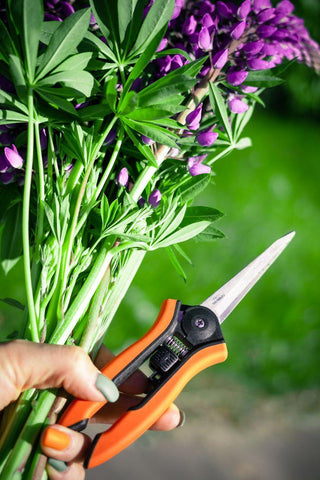 Gardening Shears Use For Trimming Plants