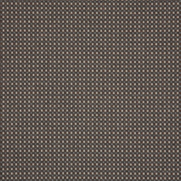 Dimension by Sunbrella - Depth Fossil - Daz Fabrics