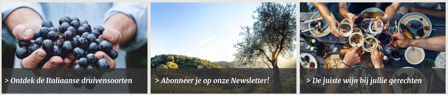 Michele Moresi Newsletter