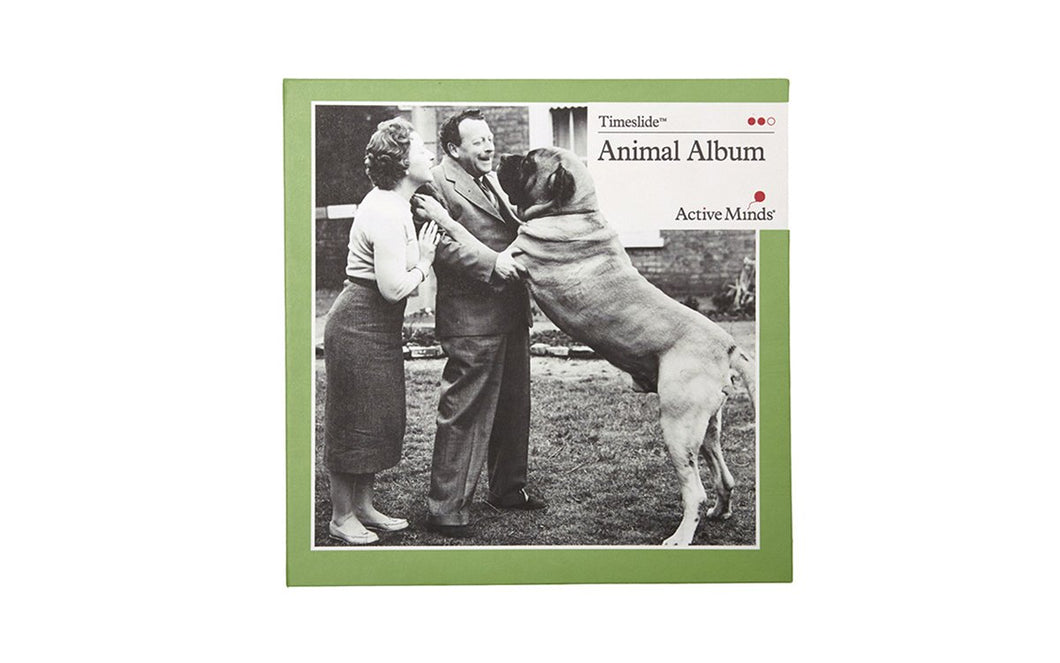 Animal Album Time Slide