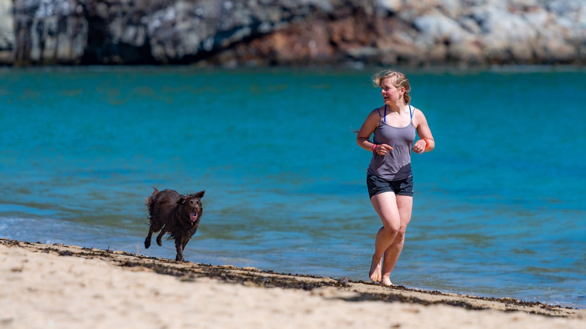 dog and girl running on the beach
