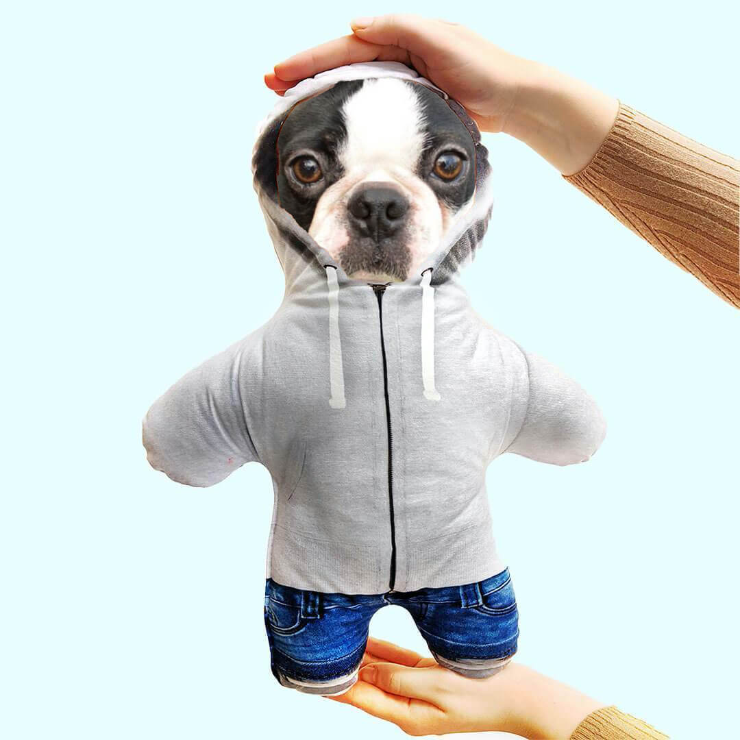 Personalizable Pet Mini Me - Hoodie (4525359661113)