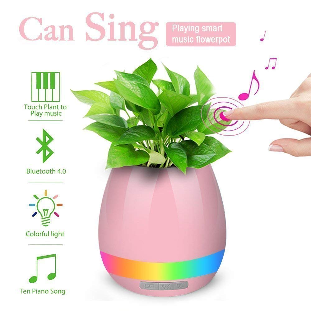 UnTech Musical Flower Pot with Bluetooth Music Speakers,With LED Lights and Touch Control Piano play music when you touch the leaves (Color May Vary) - gadgetbucketindia