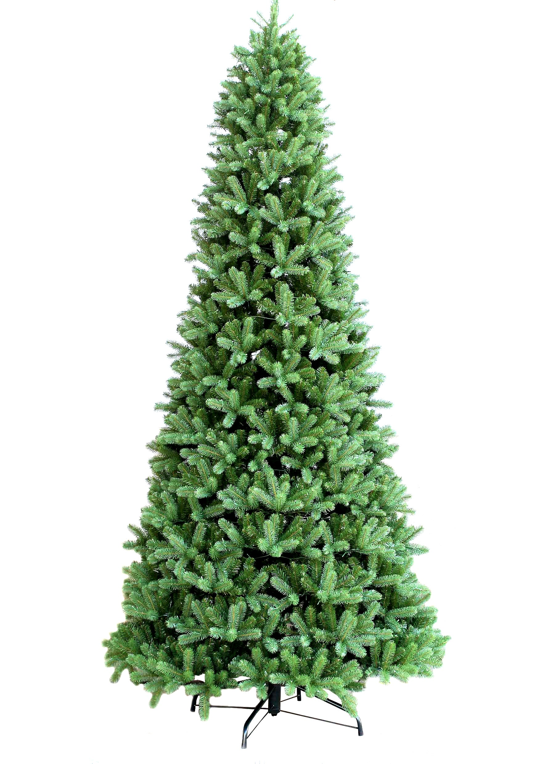 15' King Douglas Fir Quick-Shape Tree with 2150 Warm White LED Lights